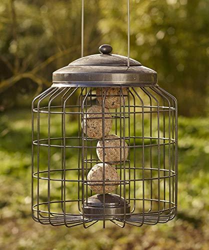 Kingfisher Premium Bird Tavolo con Alimentatore Integrato