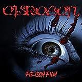 Fleischfilm (LTD. Boxset)