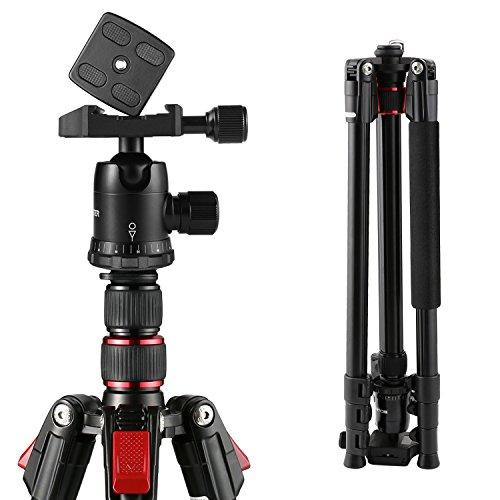 BC Master Stativ Kamera 193cm Dslr Kamerastativ mit Tragetasche, Kugelkopf, Blasenlevel, Schnellwechselplatte, Kamera Dreibeinstativ für Canon Sony Nikon Youtube Fuji, TA333