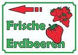 HB_Druck Verkaufsschild Erdbeeren links A4 Rückseite selbstklebend