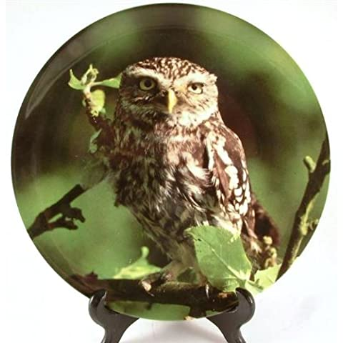 Wedgwood-Piatto a forma di gufo, Night of the Guardian Keepers the Night Watch, Michael Leach-CP1023 - Piatto Keepers