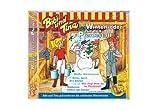 Bibi und Tina Winterlieder für den Pferdestall