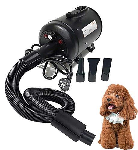 Haustier Haartrockner Hund Katze ,Haustierpflege-Gebläse mit Heizung,Variable Geschwindigkeit / 2600W / Geräuschreduzierung / 3 verschiedene Düsen, für große kleine Hunde Katzen, schwarz,Europeanplug