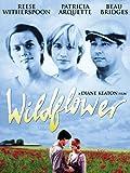 Wilde Sehnsucht (Wildflower)