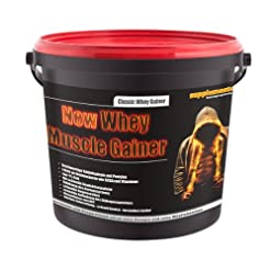 New Whey Muscle Gainer