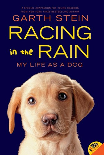 Racing In The Rain por Garth Stein