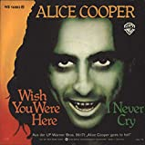 Wish You Were Here [Vinyl Single]