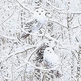 Timeless Treasures Stoff mit Eulen im Schnee