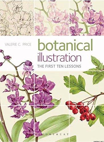 Botanical Illustration: The first ten lessons por Valerie Price