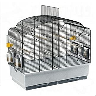 Beautifully Shaped Bird Cage With Basic Accessories For Parakeets, Black Grid – Can Be Partitioned Into Two Areas 510IhCIXn7L
