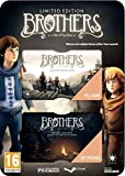 Brothers : A Tale of Two Sons - Limited Edition [Carte de téléchargement]