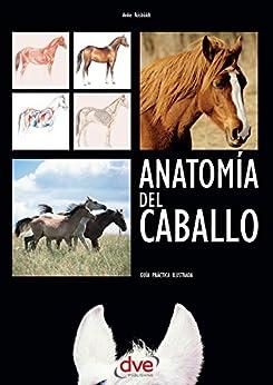 Descargar Anatomía del caballo: Guía práctica ilustrada PDF