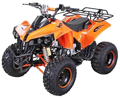Kinder Quad S-10 125 cc Motor Miniquad Midiquad 125 ccm Warrior (Orange)