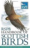 RSPB Handbook of Scottish Birds