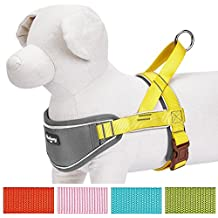 Blueberry Pet 3M Reflective Strips Nylon Solid Color Sunshine Yellow Neoprene Padded Anti/No-pull Adjustable Training Dog Harness, Large