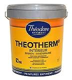 Peinture isolante thermique blanche intérieure mate : Theotherm intérieur 15L