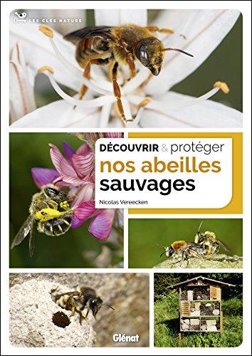Découvrir et protéger nos abeilles sauvages par Nicolas Vereecken