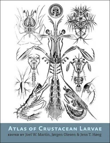 Atlas of Crustacean Larvae