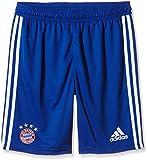 adidas Kinder FC Bayern Training Shorts für Youth, Collegiate Royal/White, 164, F49536