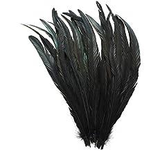 ERGEOB® Naturaleza Decoración gallo cola de plumas negro blanco marrón 30-35 cm / 12-14 pulgadas de largo, ideal para trajes, sombreros artesanía, decoración del hogar, bricolaje, etc.