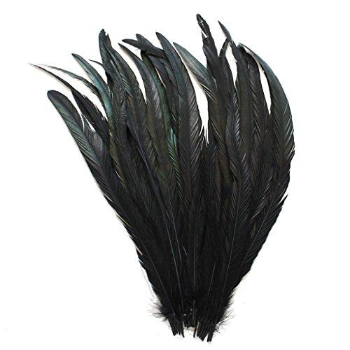 Ergeob panax piume di gallo 50 pezzi in 30-35cm lunghezza, ideale per carnevale, halloween, artigianato, handwerk, fai-da-te, abbigliamento, costumi nero