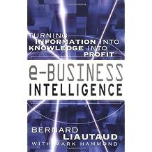 e-Business Intelligence, Engl. ed.: Turning Information into Knowledge into Profit