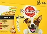 Pedigree Vital Protection/Hundefutter Multipack mit 4 Sorten Fleisch in Sauce/48 x 100g