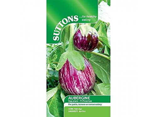 Suttons Seeds 150911 F1 Saatgut Aubergine Pinstripe (Live Auberginen)