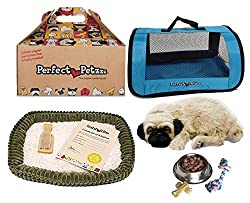 Perfect Petzzz Huggable Pug Puppy with Blue Tote For Plush Breathing Pet and Dog Food