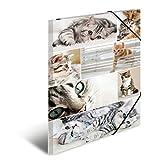 Herma 19219 Sammelmappe DIN A3 Karton, Motiv Katzen, Serie Tiere, Eckspanner, 1 Zeichenmappe, auch für Kinder