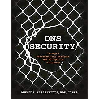 DNS Security: In-depth Vulnerability Analysis and Mitigation Solutions (English Edition)