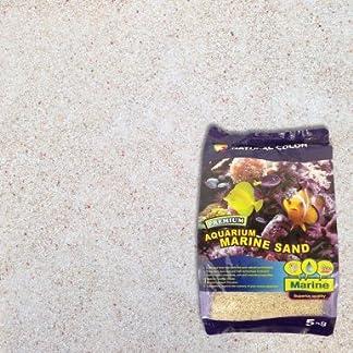 Natural Colour Marine Sand, 0.8-1 mm 7