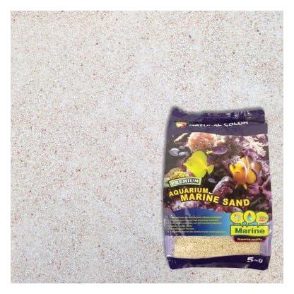 Natural Colour Marine Sand, 0.8-1 mm 1