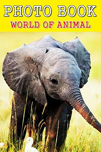 photo-book-wolrd-of-animal-vol12-photography-photo-book-english-edition