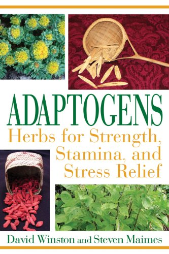 Adaptogens: Herbs for Strength Stamina and Stress Relief