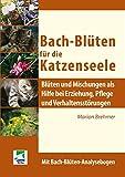 Bach-Blüten für die Katzenseele: Blüten und Mischungen als Hilfe bei Erziehung, Pflege und Verhaltensstörungen