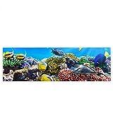 Leinwandbild 145x45 cm PREMIUM Leinwand Bild - Wandbild Kunstdruck Wanddeko Wand Canvas - UNDERWATER REEF - Aquarium Korallen Unterwasser Meer Fische Riff Korallenriff - no. 105