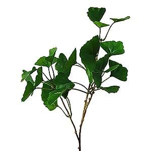 Junejour blatt ginseng pflanze emulation for Haus dekorieren hochzeit