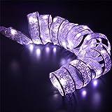 Gaddrt 40 LED Ribbon Fenster Vorhang Lichter String Lamp Haus Party Mauer Wohnzimmer Arbeitszimmer Dekor Geschenk Auffallend Dekor (Weiß)