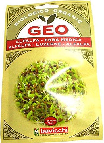 Alfa Alfa (erba medica) 40g BIO