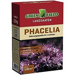Greenfield Landsaaten: Phacelia