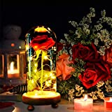 MMTX Noël Cadeau La Belle et la Bête, Rose éternelle Saint Valentin Fête des mères Cadeau Une Lumière Magique Rose avec Cloche Télécommande pour Décoration, Cadeau pour Maman Femmes