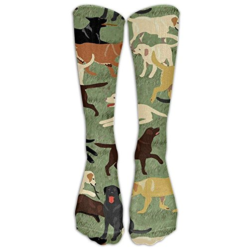d75b078fdd5 More Labradors Are Fetching Compression Socks Foot Long Stockings Anti  Fatigue Varicose Veins Socks For Men