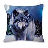 Wolf Orthopedic Pillows Review and Comparison