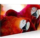 islandburner Bild Bilder auf Leinwand Papageien 1K XXL Poster Leinwandbild Wandbild Art up Your Life ®