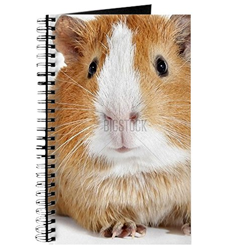 cafepress-guinea-pig-little-pet-rodent-spiral-bound-journal-notebook-personal-diary-lined