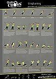 BodyCROSS Schlingentrainer Übungsposter | 26 effektive Übungen für jedes Fitnesslevel | inkl. 10 Wochen Trainingsplan | zweiteilig gefaltet (Gesamtgröße: DIN A0)