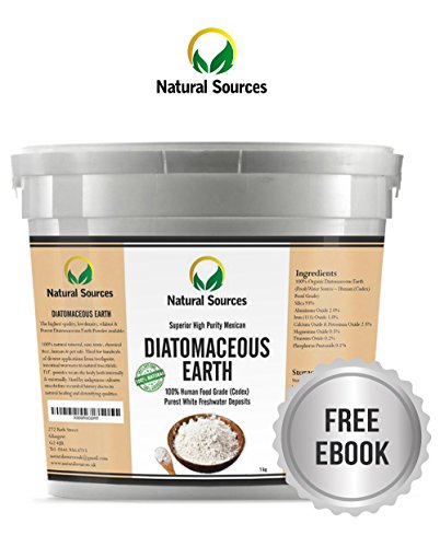 Natural Sources Reine Kieselgur - 1KG - 100% Naturprodukt