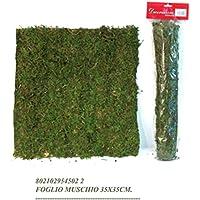 Mattonella di muschio foglio cm 35*35 per albero o presepe, set 6 pezzi