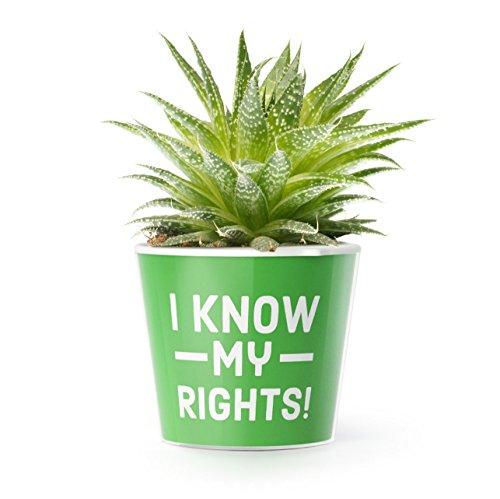 Blumentopf (ø16cm) | Lustiges Geschenk für Anwalt, Jurist oder Jura Student | I know my rights!